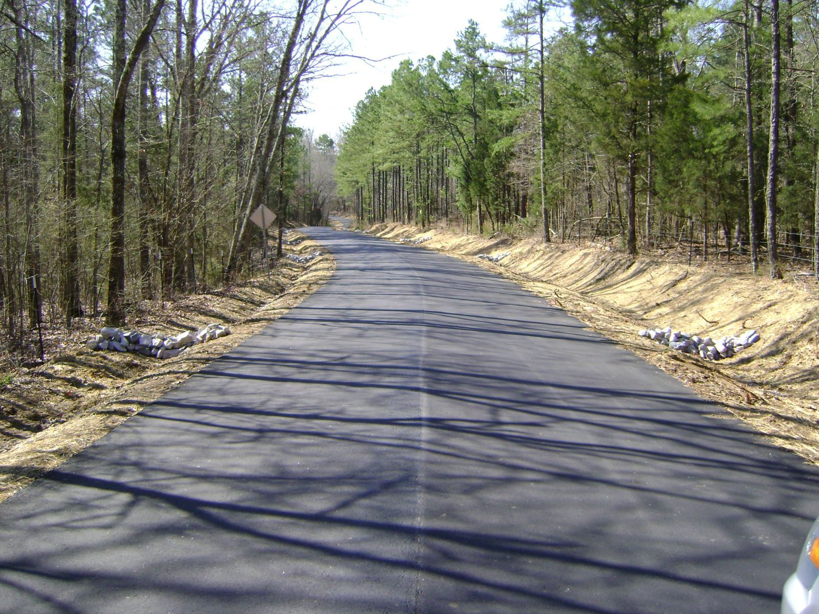 Image of paved road, no lines, that is lined with trees